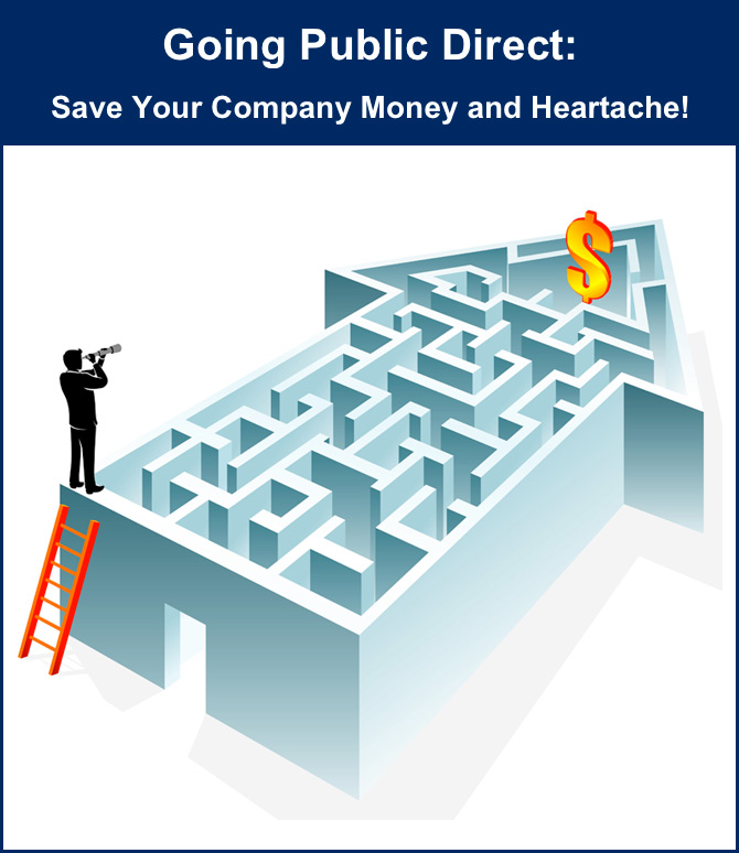 Go Public Direct eBook cover, Williams Securities Law Firm
