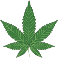 Cannabis/Marijuana Leaf